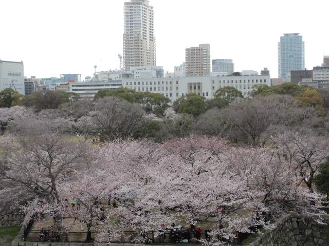 大阪城公園 西の丸庭園見下ろし