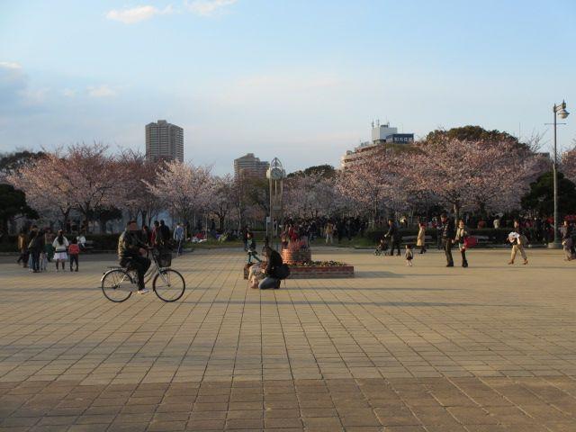 毛馬桜之宮公園 広場