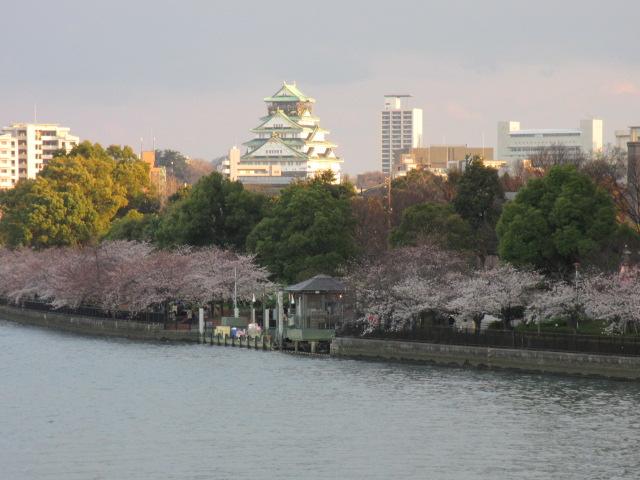 毛馬桜之宮公園 源八橋からの景色2