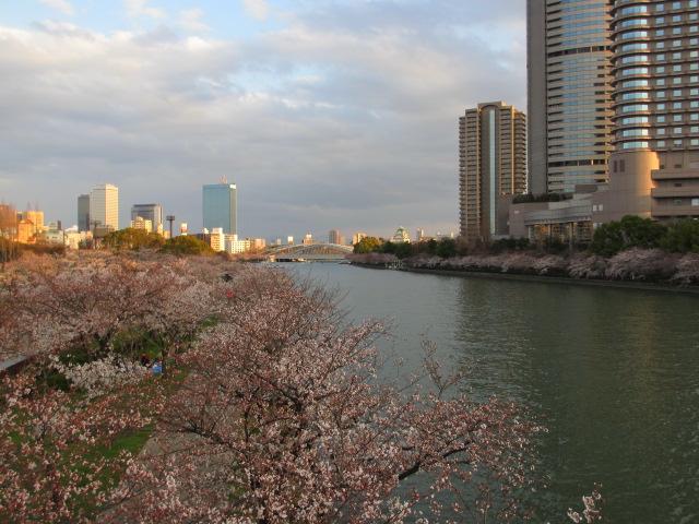 毛馬桜之宮公園 源八橋からの景色