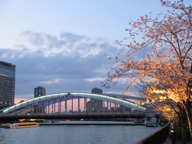 毛馬桜之宮公園 大川6