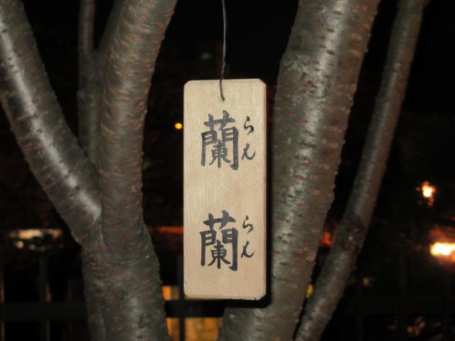 造幣局の桜の通り抜け「蘭蘭」