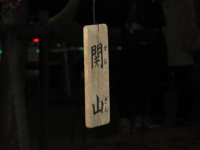 造幣局の桜の通り抜け「関山」4