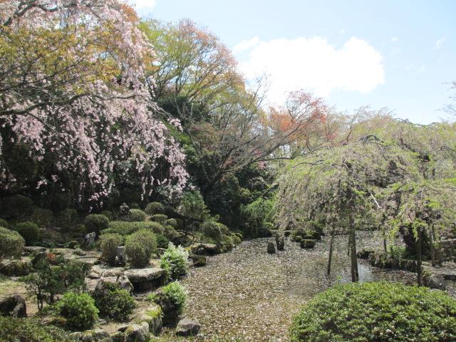 竹林院群芳園9