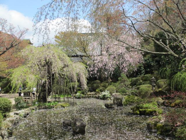 竹林院群芳園11