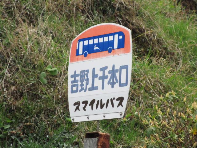 竹林院群芳園~花矢倉展望台1