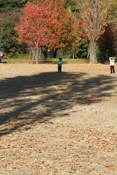 山田池の紅葉2