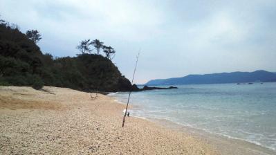 今朝、鯨浜の釣果2