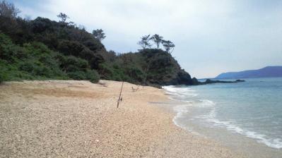 今朝、鯨浜の釣果3