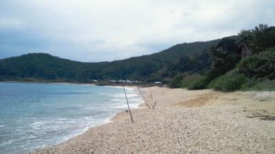 今朝、鯨浜の釣果4