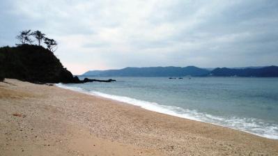 今朝の鯨浜3