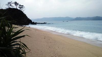 2012.1.24の鯨浜3