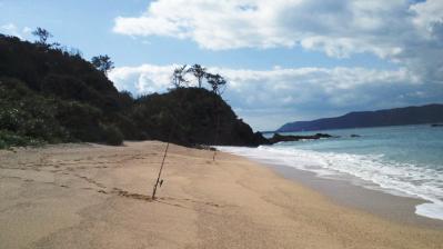 昨朝の鯨浜2