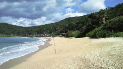 昨朝の鯨浜3