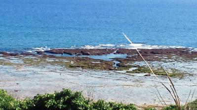 2012.2.12の土浜3