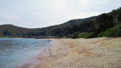 今朝の鯨浜、水綺麗1