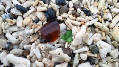浜辺の宝物3