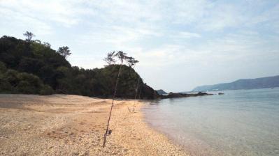 今朝の鯨浜1