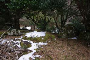 是心院の亀島と鶴翼石