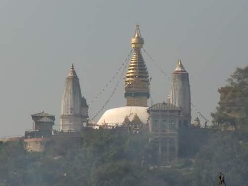 お寺が見える