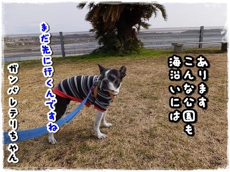 DSCF2210.jpg
