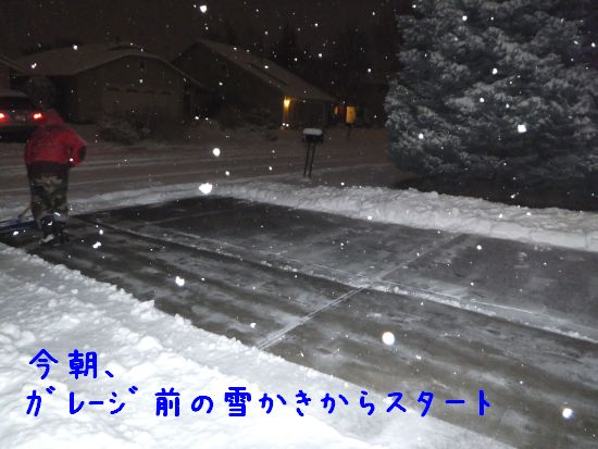 141114_03.jpg