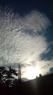 幸せなウロッチ♪のブログ-20101107145512.jpg