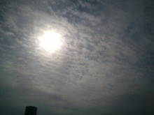 愛となかよし-2011-11-09 12.37.06.jpg2011-11-09 12.37.06.jpg
