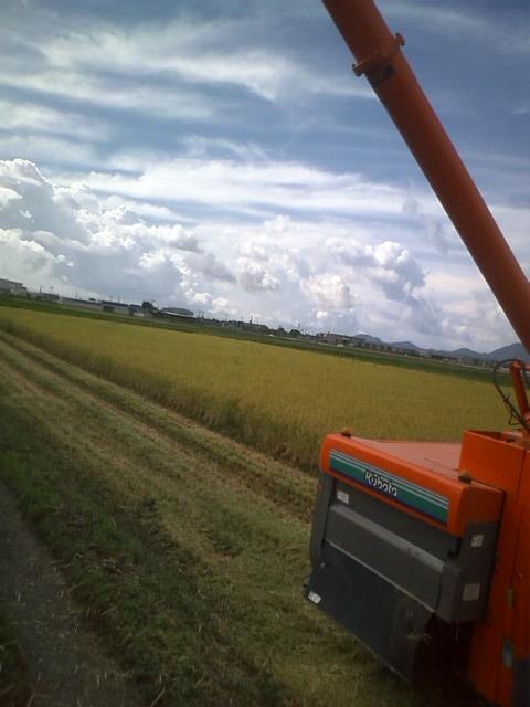 20120925inekaridosyaburi.jpg