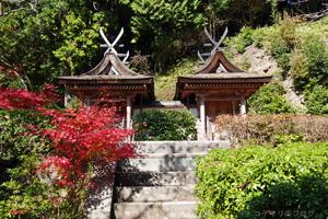 円成寺の紅葉2014