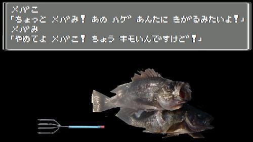 めばことめばみ_convert_20111103195425