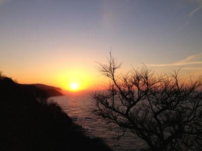 ゾウゾウ鼻の夕陽