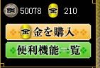 金額は5万円で調整w