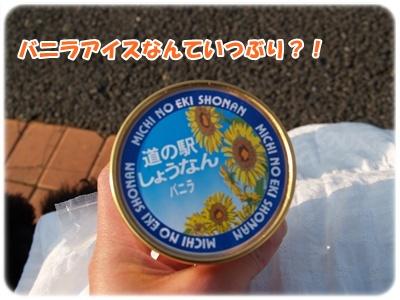 P1011675.jpg