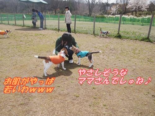P4153957_20120416153808.jpg