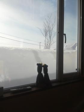 窓からの雪
