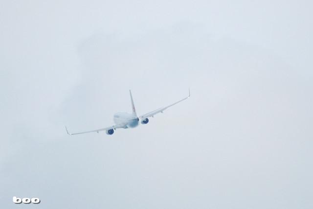 初めての望遠レンズ@龍馬空港