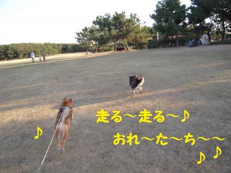 20120212-01.jpg