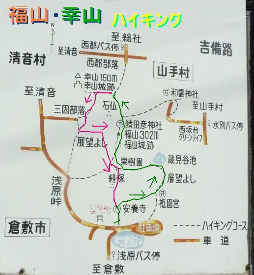 1_31_11.jpg