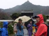 地蔵禅院近く 目の前に黒滝山 山頂 岩峰が見えるカラフルな雨合羽での登山