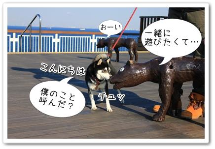 10_20120131133959.jpg