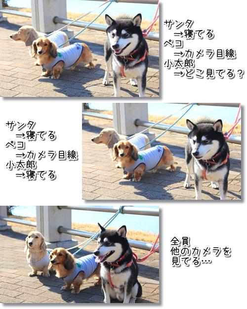 10_20120301023840.jpg