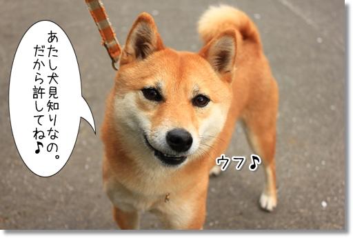 10_20120418170047.jpg