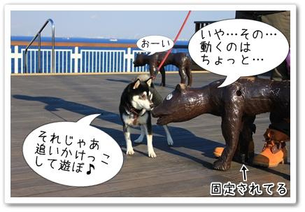 11_20120131133959.jpg