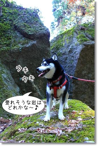 11_20120329025658.jpg
