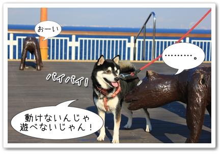 12_20120131133959.jpg