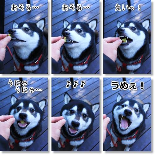 12_20120322015744.jpg