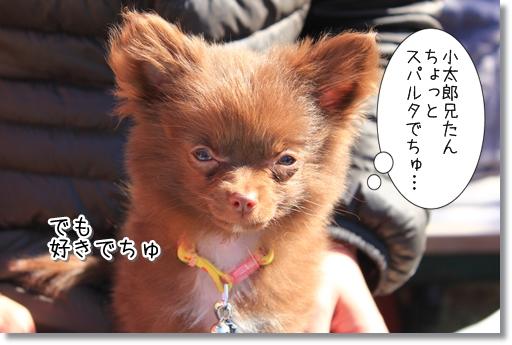 12_20120324015945.jpg