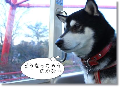 14_20120201030248.jpg