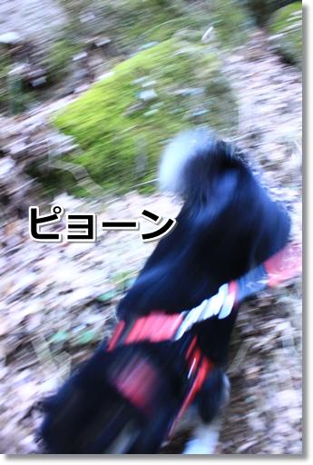 14_20120329031800.jpg